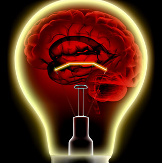 brain-energy-consumption